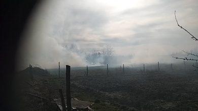 Photo of Sterkowiec / Pożar nieużytków w pobliżu domów / 16 marca 2020 r.