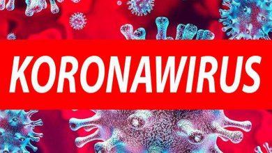 Photo of Kolejne zakażenia koronawirusem w  Powiecie Brzeskim / 20 września 2020 r.