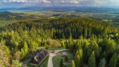 Photo of Wirtualna Inauguracja Letniego Sezonu Turystycznego w Małopolsce 2020