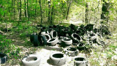 Photo of Nielegalne składowisko opon w Brzesku / 10 maja 2020 r. / zdjęcia