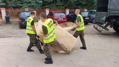 Photo of Małopolscy Terytorialsi ruszyli na pomoc powodzianom w Łapanowie
