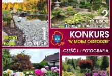 Photo of Borzęcin: Ogrodowe kompozycje jak z obrazka