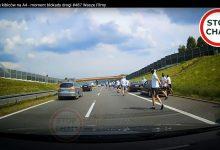Photo of Nowe nagrania z ustawki pseudokibiców na autostradzie A4
