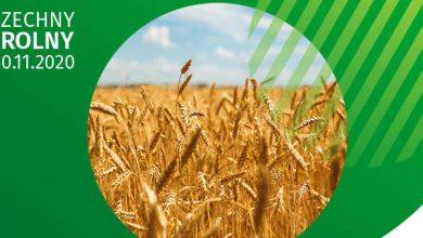 Photo of Rozpoczął się Powszechny Spis Rolny. Udział w nim jest obowiązkowy