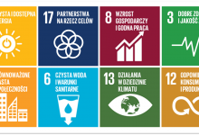 Photo of Carlsberg Polska – równowaga w centrum strategii zrównoważonego rozwoju