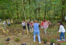 Photo of Piknik z testowaniem usług ogrodniczych / zdjęcia